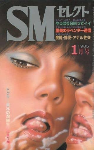 不備有)SMセレクト 1985年1月号