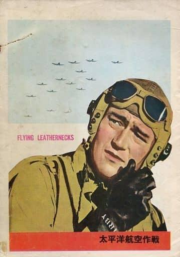 パンフ)太平洋航空作戦