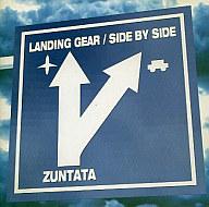 LANDING GEAR/SIDE BY SIDE