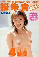 131574104m REAL 97 REAL STARS 桜朱音 BEST 4時間/桜朱音