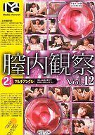 膣内観察 Vol.12