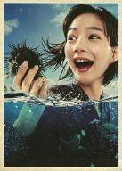あまちゃん 完全版 DVD-BOX 1 (生写真欠け)