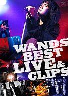 不備有)WANDS / WANDS BEST LIVE & CLIPS(状態:スリーブケースに難有り)