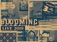 A3! / A3! BLOOMING LIVE 2019 幕張公演版