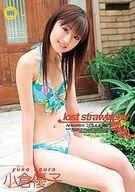 ランクB)小倉優子 / lost strawberry