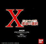X~運命の選択~TVanimation