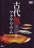 古代魚アクアリウム アロワナ・ピラクルたちの神秘