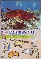 趣味/海洋紀行・竜宮城めぐり~驚異の海中クライマックス(4)