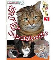 ねこ(猫)ざ ランド1 ねこ、猫、ニャンコがいっぱい