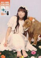 堀江由衣 / 黒ネコ同盟 ひみつ文書 File.71(Yui Horie Official Fan Club since 2001.April)