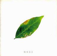裕木奈江 / a Leaf(廃盤)