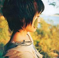 矢野絢子 / ナイルの一滴