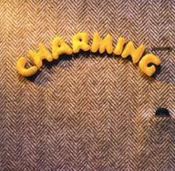 スターダスト・レビュー / CHARMING