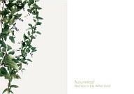 Autumnleaf/Red Lies in the White Field