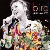 bird / bird's nest 2013