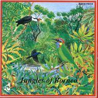 ネイチャー・コンサート・シリーズ 世界の野鳥たち ボルネオのジャングル
