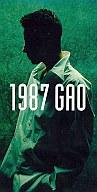 GAO          /1987/InnerChil