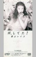 葉山 レイコ       /何、してた?/純愛迷宮/カラオ