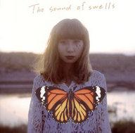 ランクB)タグチハナ / The sound of swells
