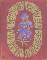 メアリと魔女の花 コレクターズ・エディション:ブルーレイ 4K ULTRA HD + ブルーレイ [数量限定版]