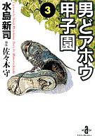 男どアホウ甲子園(文庫版)(3) / 水島新司