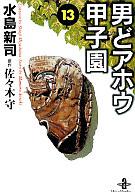 男どアホウ甲子園(文庫版)(13) / 水島新司