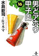 男どアホウ甲子園(文庫版)(16) / 水島新司