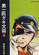 男一匹ガキ大将(文庫版)(13) / 本宮ひろ志
