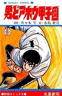 男どアホウ甲子園(8) / 水島新司