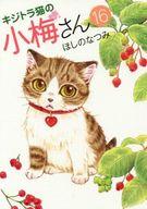 キジトラ猫の小梅さん(16) / ほしのなつみ