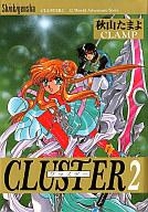 CLUSTER(2) / 秋山たまよ