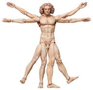 figma テーブル美術館 ウィトルウィウス的人体図