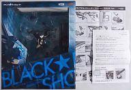 [破損品/初期不良対応シール有] ブラック★ロックシューター -animation version- 「ブラック★ロックシューター」 1/8 PVC製塗装済み完成品