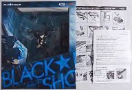 [破損品/付属品欠品] ブラック★ロックシューター -animation version- 「ブラック★ロックシューター」 1/8 PVC製塗装済み完成品