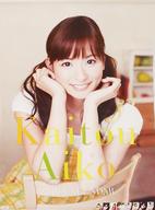 皆藤愛子 2010年度カレンダー