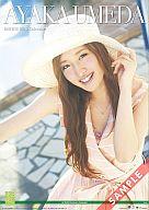 梅田彩佳 AKB48 2013年度 B2サイズカレンダー