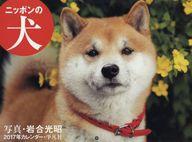 岩合光昭 ニッポンの犬 2017年度カレンダー