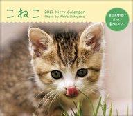 ミニカレンダー こねこ 2017年度カレンダー