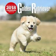 ゴールデン・レトリーバー 2018年度大判カレンダー