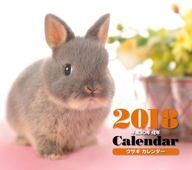 ミニカレンダー ウサギ 2018年度カレンダー