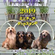 ミニチュア・ダックスフンド 2019年度大判カレンダー