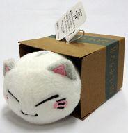 白ねむネコ 箱入りマスコット 「ねむネコ」