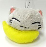 灰ねむネコ フルーツマスコット 「ねむネコ」