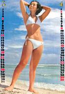 両面ポスター(四つ折) 山口百恵/ピンク・レディー 月刊平凡1978年4月号付録