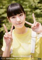 コレクションピンナップポスターPart2 No.31 飯窪春菜 「モーニング娘。'15コンサートツアー春~GRADATION~」