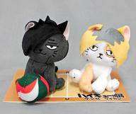 研磨ネコ&黒尾ネコ ぬいぐるみセット 「ハイキュー!!」