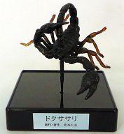 06.ドクササリ(毒刺蠍) 「松本人志 世界の珍獣 第1弾」