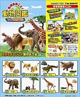 【ボックス】地球まるごと動物図鑑 <食玩>