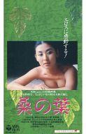 桑の葉('85韓国)