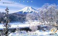 「霧氷と富士(忍野)」